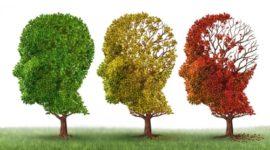 Symbole Alzheimer